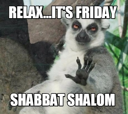 Image result for shabbat shalom meme