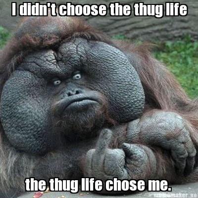 Internet Thug Meme