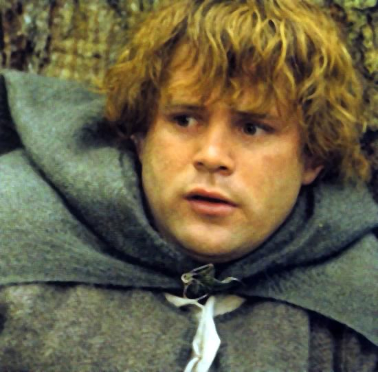 Samwise Gamgee ... Lord Of The Rings Quotes Sam